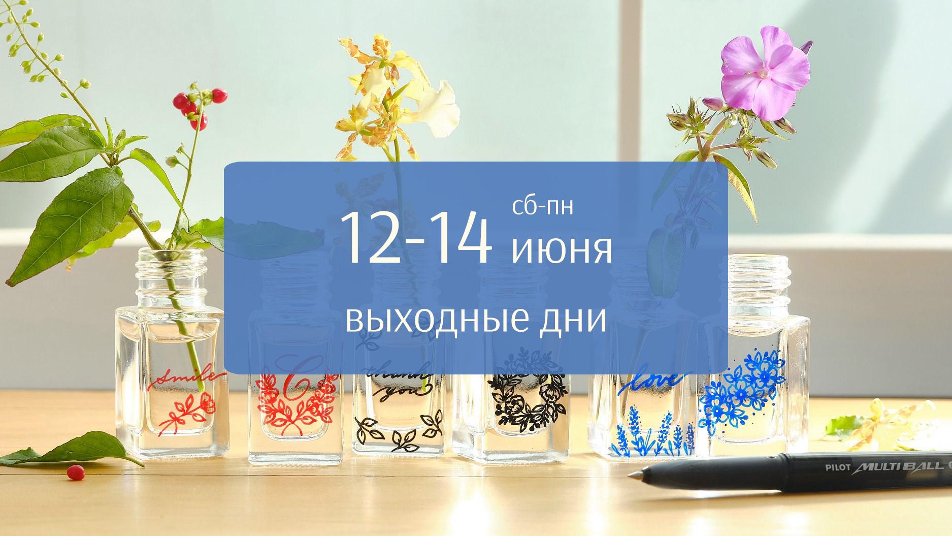 График работы интернет-магазина pilotrus.ru в июне
