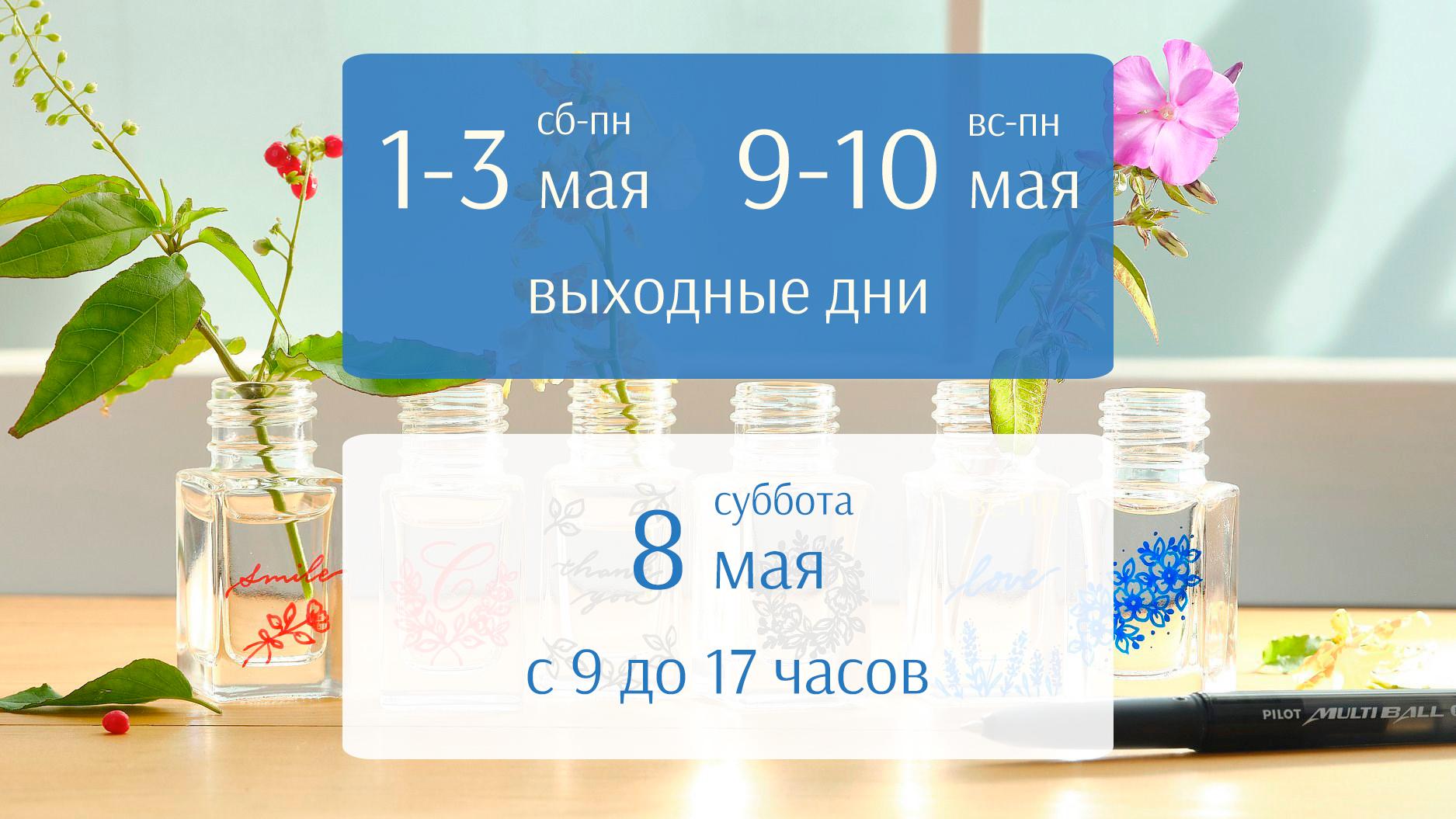 График работы интернет-магазина pilotrus.ru в мае